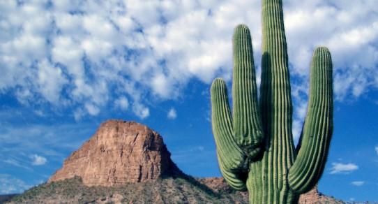 Arizona - Apache Trail